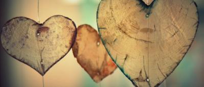 hearts photo logo